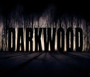 Darkwood   Torrent İndir  